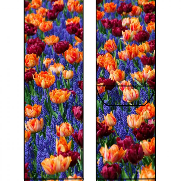 calcetines tulipanes